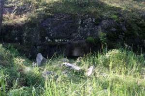 En av två nödutgångar ur berget, väl dolt under sprängsten.