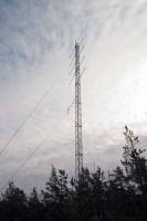 195_9594-mast.jpg